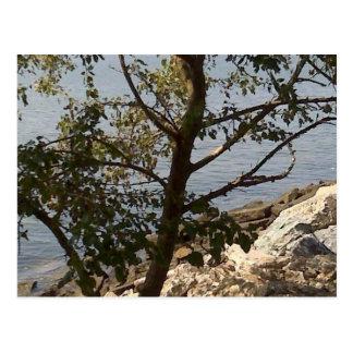 Hampton, opinión de bahía de Chesapeake del VA Tarjetas Postales