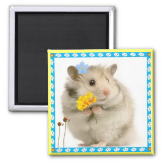 hamster 2 inch square magnet