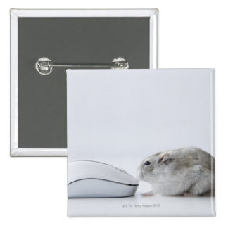 Hamster and Computer mouse Button