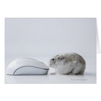 Hamster and Computer mouse Card