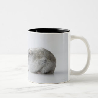Hamster and Computer mouse Coffee Mugs