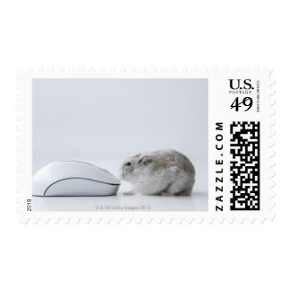 Hamster and Computer mouse Postage