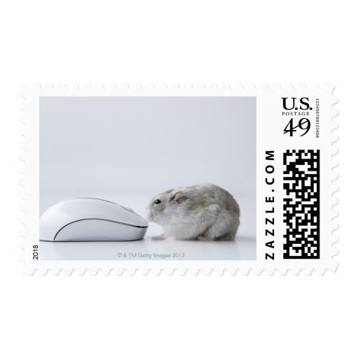 Hamster and Computer mouse Stamp