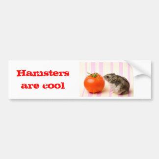 Hamster and tomato bumper sticker