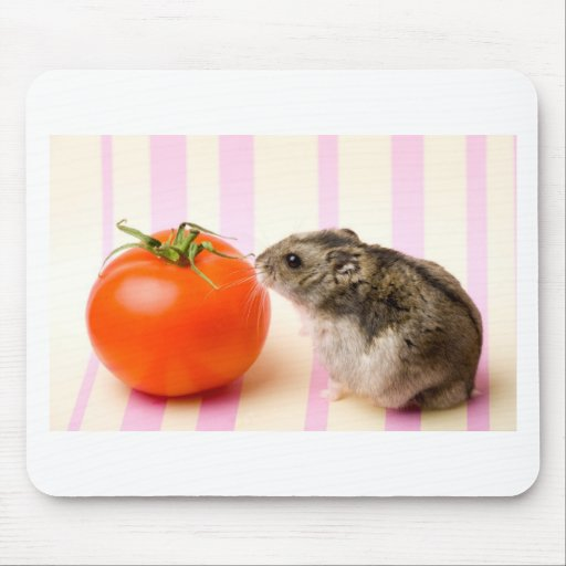 Hamster and tomato mouse pad