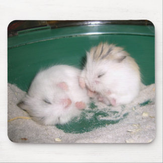 Hamster babies (mousepad) mouse pad
