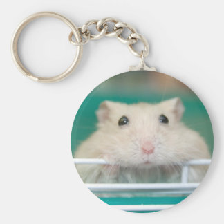 Hamster: Begging for Attention Keychain
