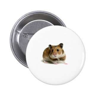 Hamster Button