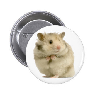 Hamster Pinback Buttons