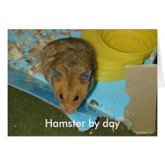 Hamster by day card