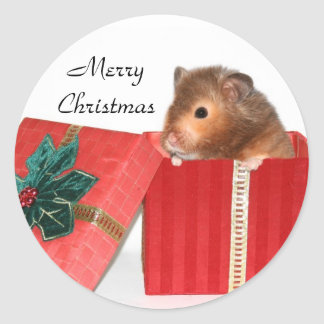 Hamster Christmas gift Classic Round Sticker