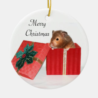 Hamster Christmas gift Double-Sided Ceramic Round Christmas Ornament