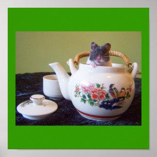 Hámster de Noah en poster de la caldera de té