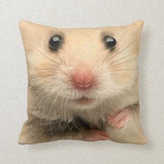 Hámster del mascota de la almohada