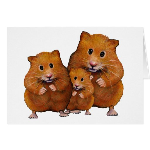 Hamster Family of Three: Cute: Color Pencil Greeting Cards