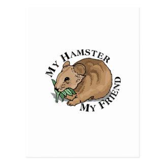 Hamster Friend Postcard