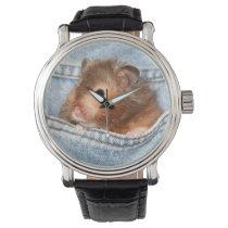 Hamster in blue jeans wristwatch