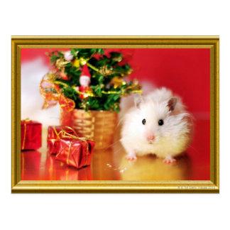 Hámster Kokolinka con el árbol de navidad Tarjetas Postales