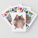 Hámster lindo baraja de cartas