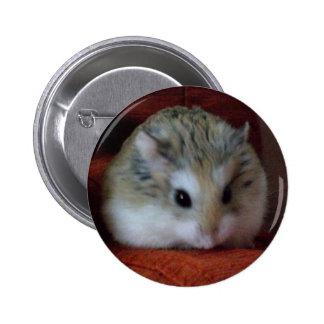 Hámster lindo en un botón - Hammy Pins