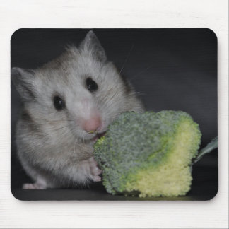 Hamster Mousemats
