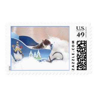 Hamster noah sledding postage