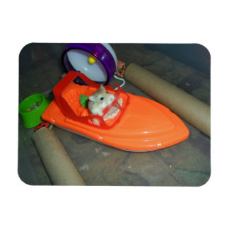Hamster on a boat rectangular photo magnet