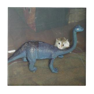 Hamster on a dinosaur ceramic tile