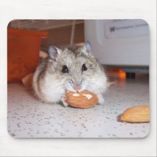Hamster Pad Mouse Mat