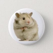 Hamster Pinback Button