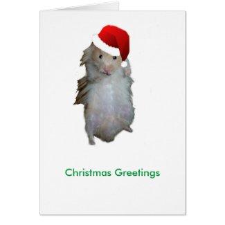 Hamster Santa Greeting Card
