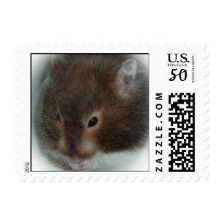 Hamster Stamp