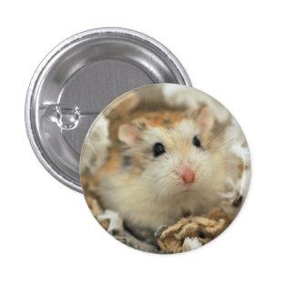 Hamster stare (button)