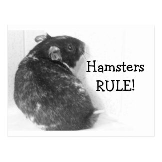 HamstersRULE! Postcard