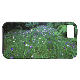 Hana Shobu (Japanese Water Iris), Meiji Shrine, iPhone SE/5/5s Case