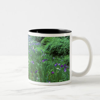 Hana Shobu (Japanese Water Iris), Meiji Shrine, Two-Tone Coffee Mug