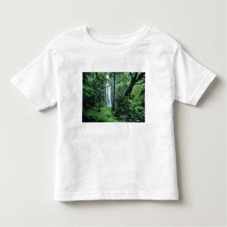 Hanakapiai baja a lo largo de la costa del Na T-shirts