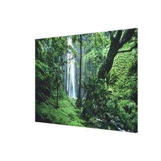 Hanakapiai Falls along the Na Pali Coast, Kauai, Stretched Canvas Prints