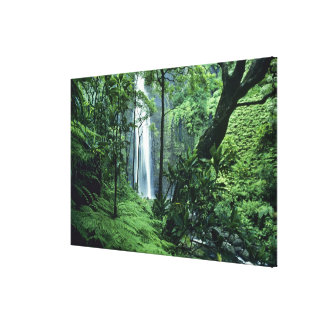 Hanakapiai Falls along the Na Pali Coast, Kauai, Canvas Print