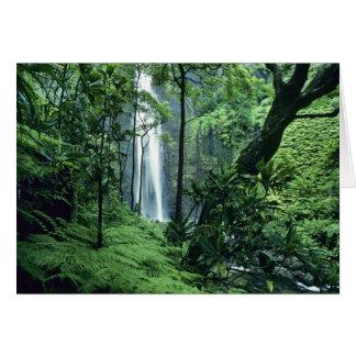 Hanakapiai Falls along the Na Pali Coast, Kauai, Card