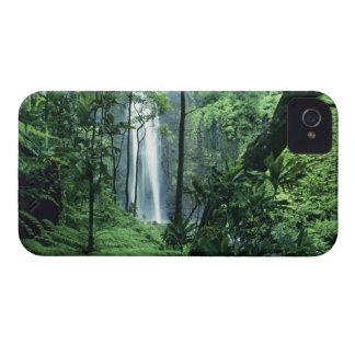 Hanakapiai Falls along the Na Pali Coast, Kauai, Blackberry Cases