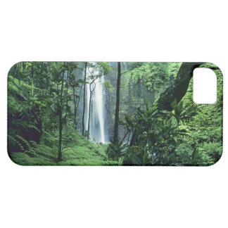 Hanakapiai Falls along the Na Pali Coast, Kauai, iPhone 5 Covers