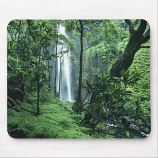 Hanakapiai Falls along the Na Pali Coast, Kauai, Mouse Pad