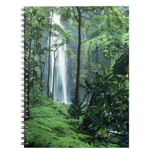 Hanakapiai Falls along the Na Pali Coast, Kauai, Notebook