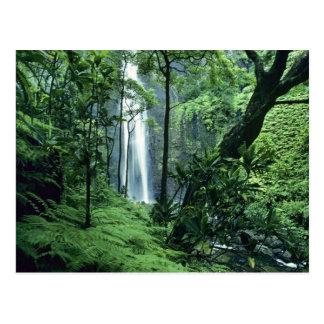 Hanakapiai Falls along the Na Pali Coast, Kauai, Postcard