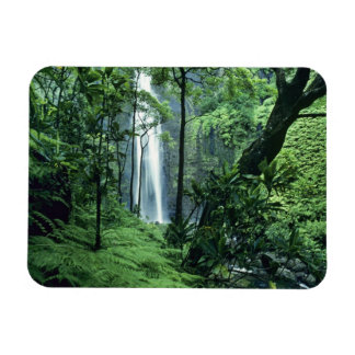 Hanakapiai Falls along the Na Pali Coast, Kauai, Rectangular Photo Magnet