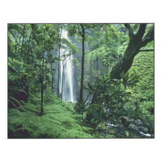 Hanakapiai Falls along the Na Pali Coast, Kauai Wood Wall Art