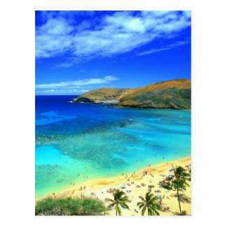 Hanauma Bay Beach Aloha! Postcard