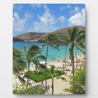 Hanauma Bay Hawaii - 2014 Vacation Plaque