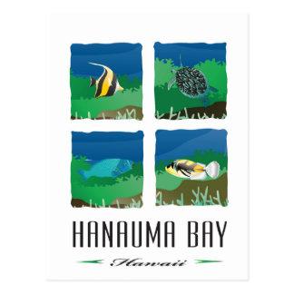 Hanauma Bay Hawaii - 2014 Vacation Post Card